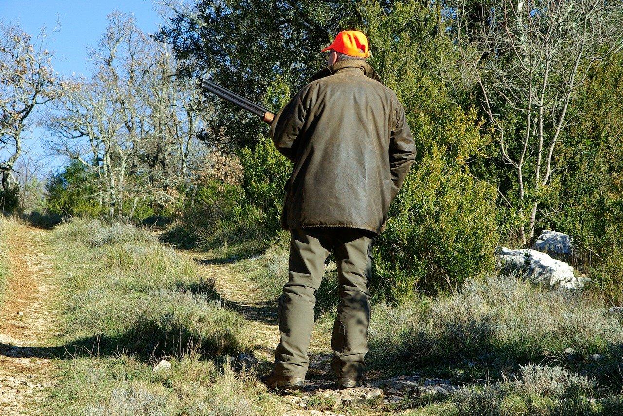 hunting, hunter, gun